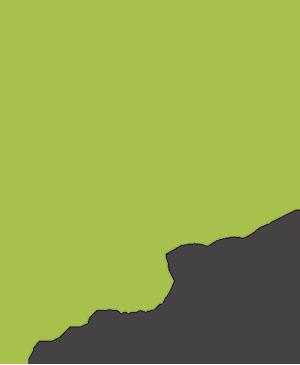 STRD 2017